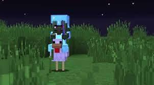 Todo sobre el Jinete Avícola en Minecraft