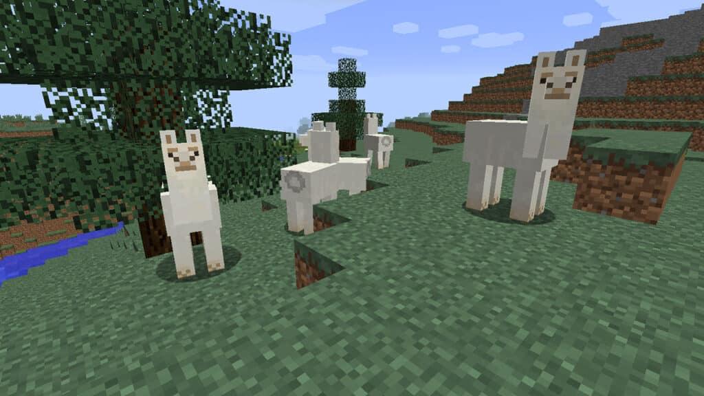 Todo sobre la Llama en Minecraft
